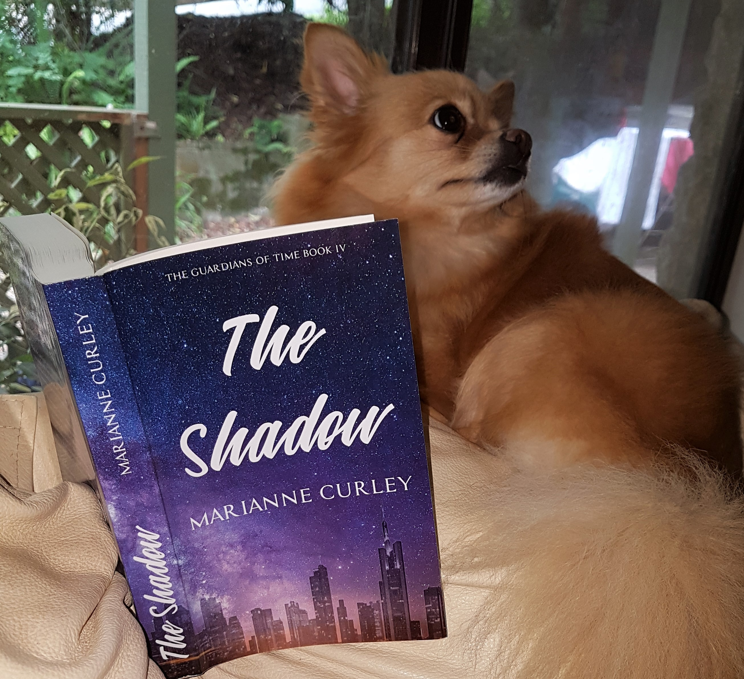 Pixie reading shadow 1